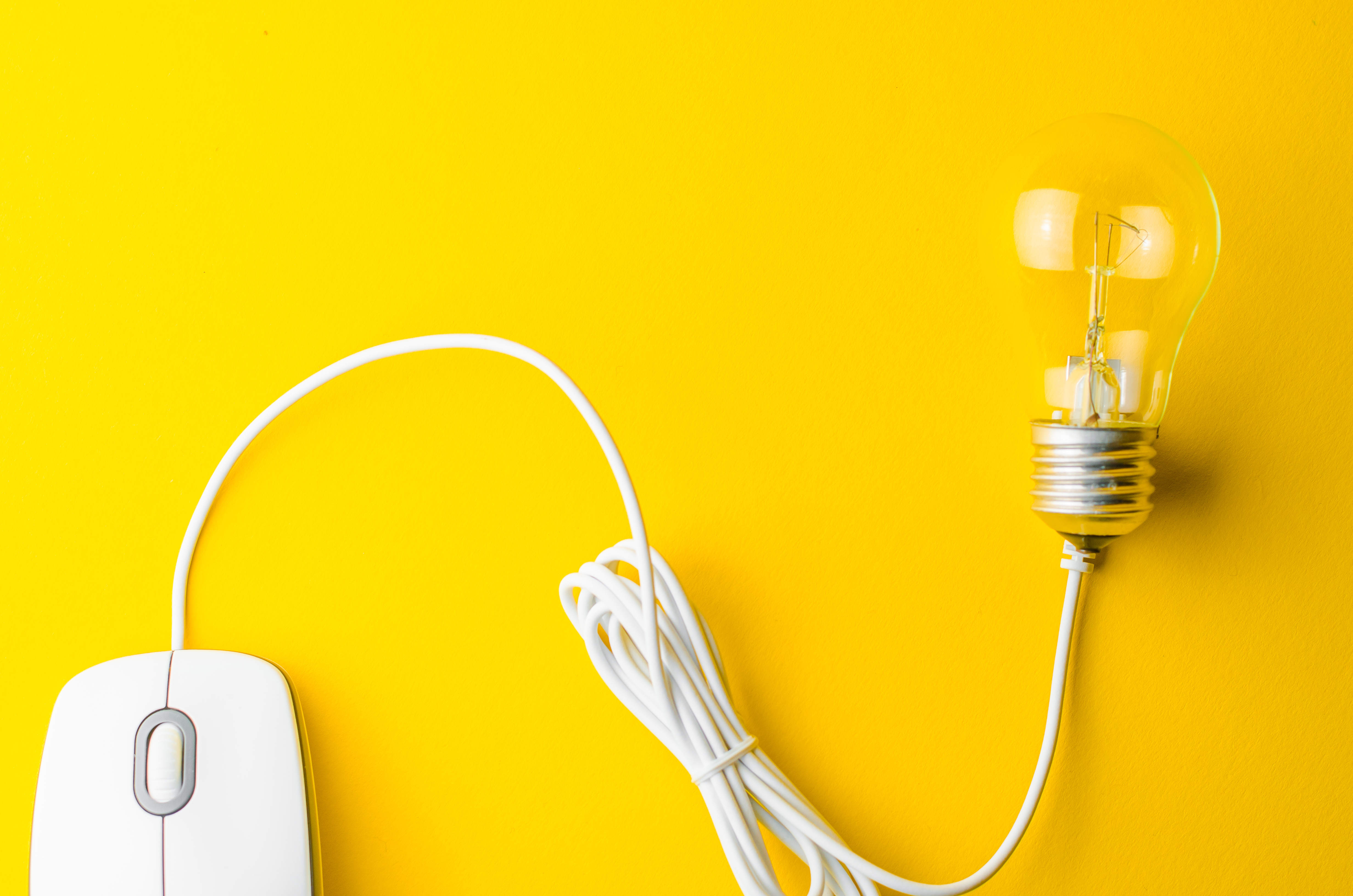 Mouse and Bulb.jpg
